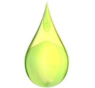 File:LEDS bioenergy.jpeg