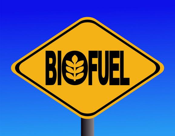 File:Biofuel sign.jpg