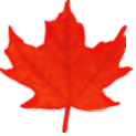 Logo: Natural Resources Canada