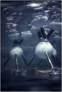 File:Ocean Wave Energy Converter OWEC.jpg
