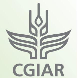 File:CIGAR.JPG