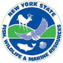 File:NY state DFWMR logo.png