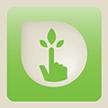 File:Green Kiosk Viewer Logo.png