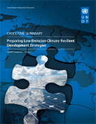 Preparing Low-Emission and Climate-Resilient Development Strategies (LECRDS) - Executive Summary Screenshot