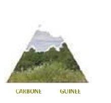 File:Carbone.JPG