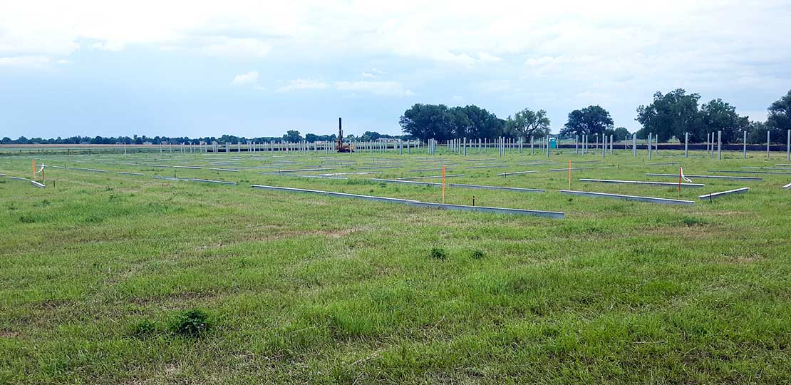Photo of an open grassy field with cement pillars on the ground organized in rows and standing upright in rows