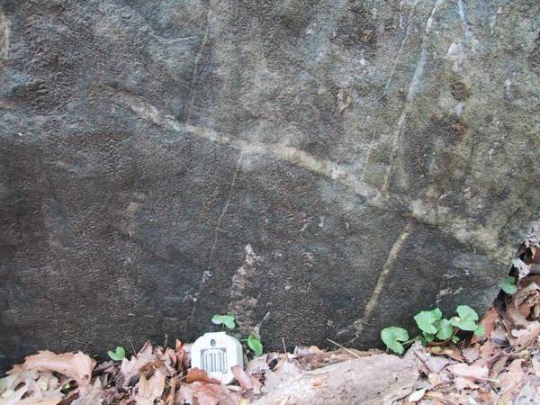 File:Offset quartz veins montrose.jpg