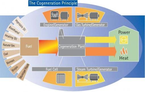 Visual Representation of Cogeneration