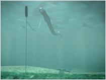 Anaconda bulge tube drives turbine.jpg