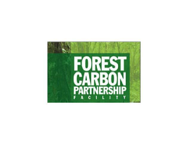 File:ForestCarbon.JPG