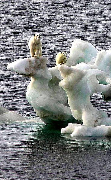 File:Global-warming (2).jpg