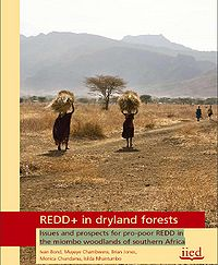 REDD+ In Dryland Forests: Issues and Prospects for Pro-poor REDD in the Miombo Woodlands of Southern Africa Screenshot