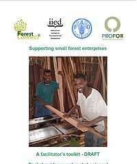 Supporting Small Forest Enterprises: A Facilitator's Toolkit Screenshot