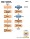 12-FD-i - Fish Habitat Assessment Process.pdf
