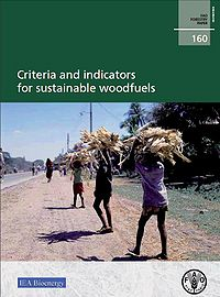 Criteria and Indicators for Sustainable Woodfuels Screenshot