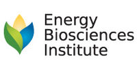 Logo: Energy BioSciences Institute