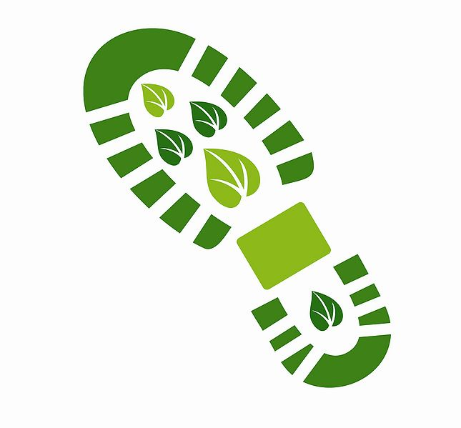 File:Boots Final Logo Jpeg 031109.JPG