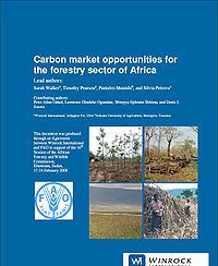 Carbon Market Opportunities for the Forestry Sector of Africa Screenshot