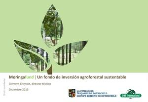 Clement Chenoist - Fondo forestal Moringa.pdf