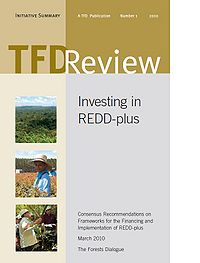 Investing in REDD+:Consensus Recommendations on Frameworks for the Financing and Implementation of REDD+ Screenshot