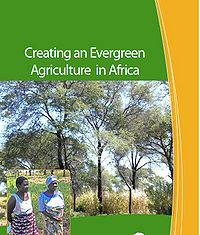 Creating an Evergreen Agriculture in Africa: for Food Security and Environmental Resilience Screenshot