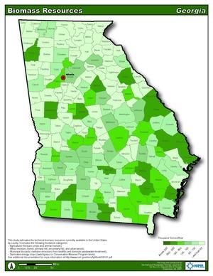Georgia Biomass Resource (PDF)