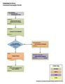 06COAExtraLegalVehiclePermittingProcess.pdf
