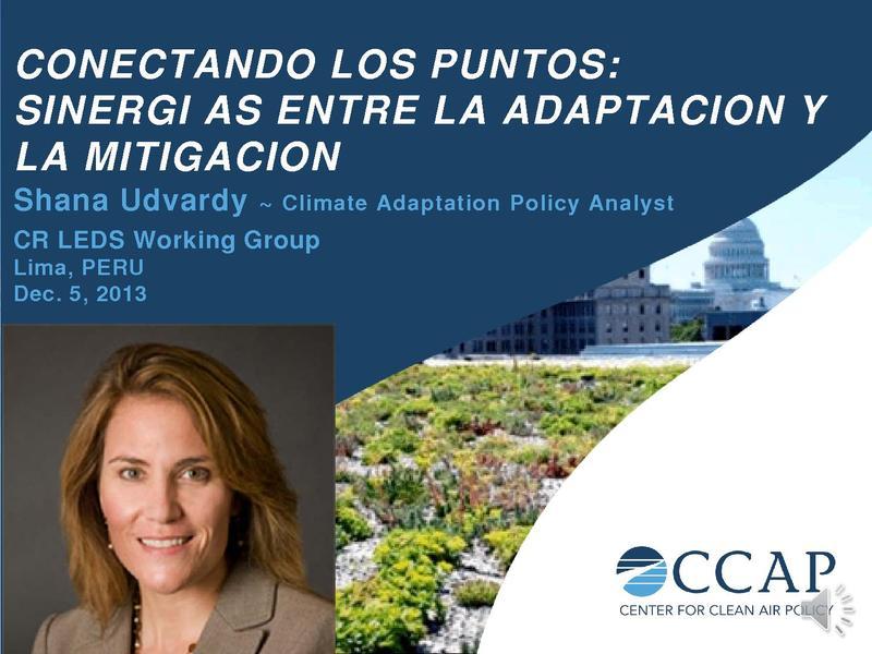 File:Shana Udvardy - CONECTANDO LOS PUNTOS.pdf