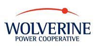 Logo: Wolverine Power Supply Cooperative
