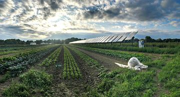 Photo of the sun peeking through the clouds over a solar panel on a farm