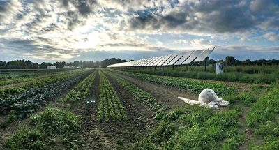 Photo of the sun peeking through the clouds over a solar panel on a farm