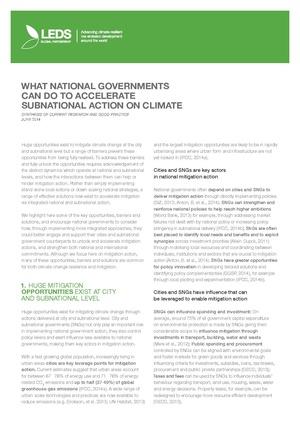 LEDSGP SNI Paper Bonn 2014.pdf