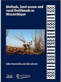 Mozambique-Biofuels, Land Access and Rural Livelihoods Screenshot