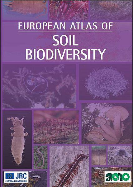 File:SoilBiodiversity.JPG