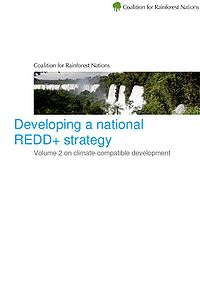 Developing a National REDD+ Strategy Screenshot