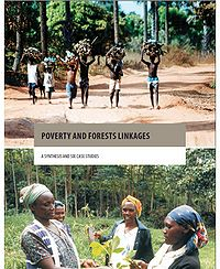 Poverty and Forests Linkages Screenshot