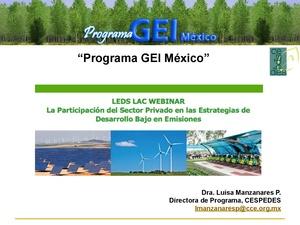 Programa GEI Mexico- Adrian Galvez.pdf