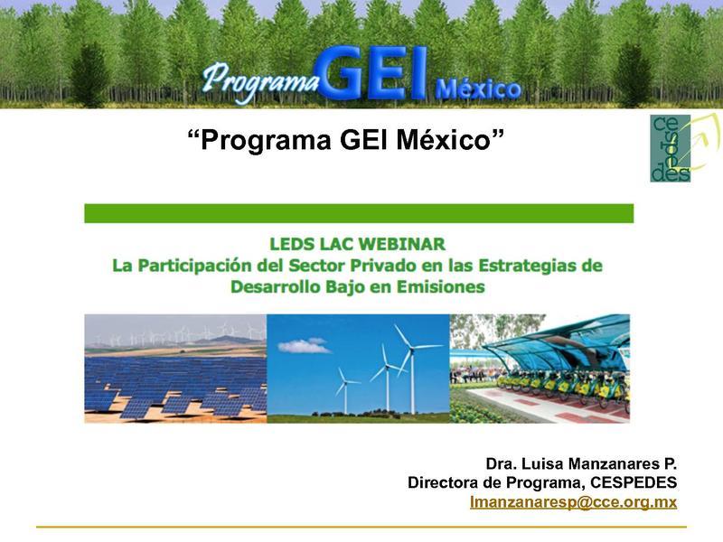 File:Programa GEI Mexico- Adrian Galvez.pdf