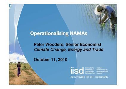 File:October 11 presentation - Peter Wooders IISDx.pdf