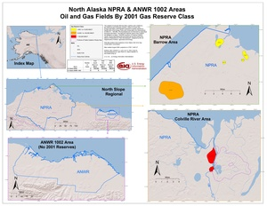 National Petroleum Reserve-Alaska and Arctic National Wildlife Refuge 1002 Area By 2001 Gas Reserve Class