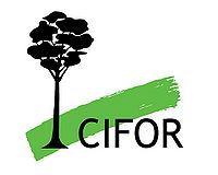 Logo: Center for International Forestry Research