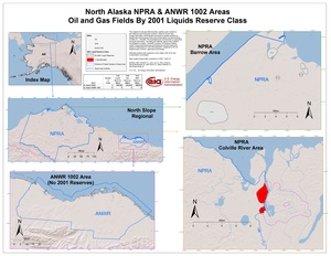 National Petroleum Reserve-Alaska and Arctic National Wildlife Refuge 1002 Area By 2001 Liquids Reserve Class