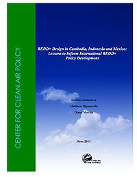 CCAP-REDD+ Design in Cambodia, Indonesia, and Mexico: Lessons to Inform International REDD+ Policy Development Screenshot