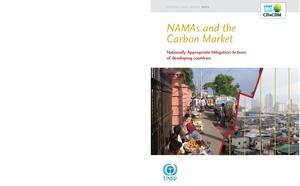 NAMAS CarbonMarket.pdf