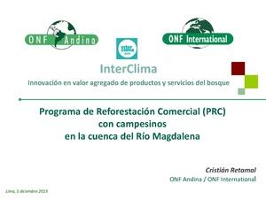 Christian retamal - Programa de reforestación forestal.pdf