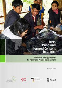 Free, Prior, and Informed Consent in REDD+: Principles and Approaches for Policy and Project Development Screenshot