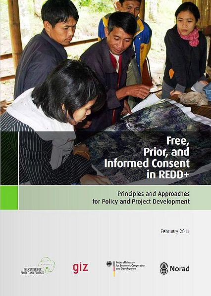 File:REDD+ guide.JPG