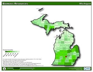 Michigan Biomass Resource (PDF)