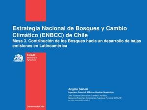 Estrategia Nacional de bosque y cc de Chile - Angelo Sartori.pdf