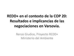 Renzo Giudice - Resultados e implicancias de las negociaciones en Varsovia..pdf